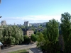 Літній краєвид за вікном