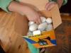 Яйця з ферми сусіда-міністра