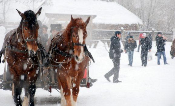 Зимова «Країна Мрій» на Мамаєвій Слободі