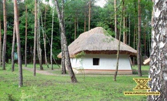 Міні-Пирогів серед лісу