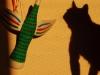 Птах Івана Приходька і наш кіт