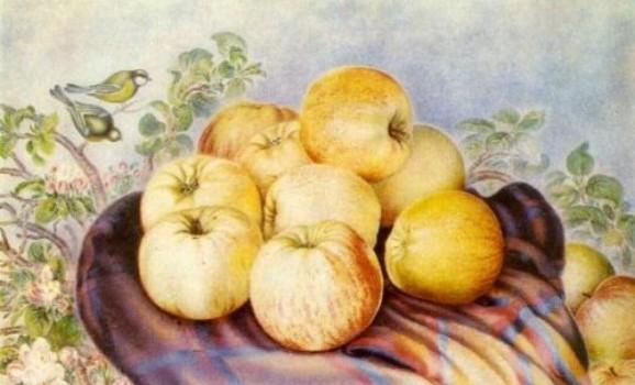 """""""Білокурівські читання"""" до 111 річниці від дня народження Катерини Білокур"""