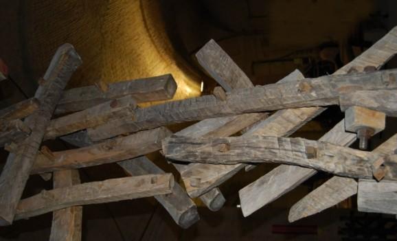 Виставка «Сили древесні»