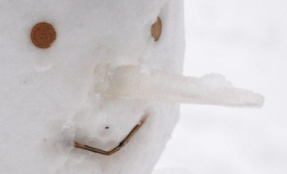 Снігові баби захотіли вареників