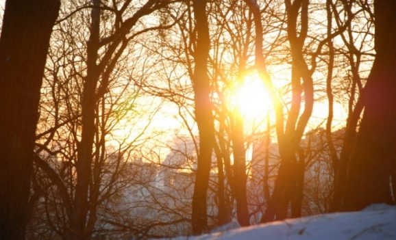 Культурно-мистецька акція «Зиму проводжати – весну закликати»